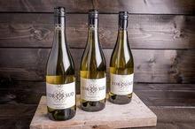 Lor du sud Chardonnay blanc 0,75 ltr p.st.