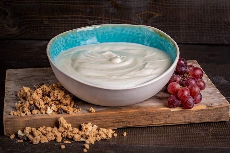 Biologische yoghurt in kom (2 liter)