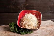 Alfalfa a 100 gram