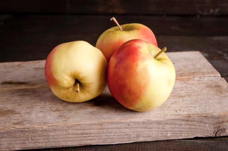 Elstar appel, klasse 1. per kist (7kg) (Ca. 40 stuks)