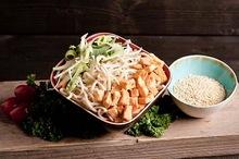 Oosterse kip salade (bijgerecht)